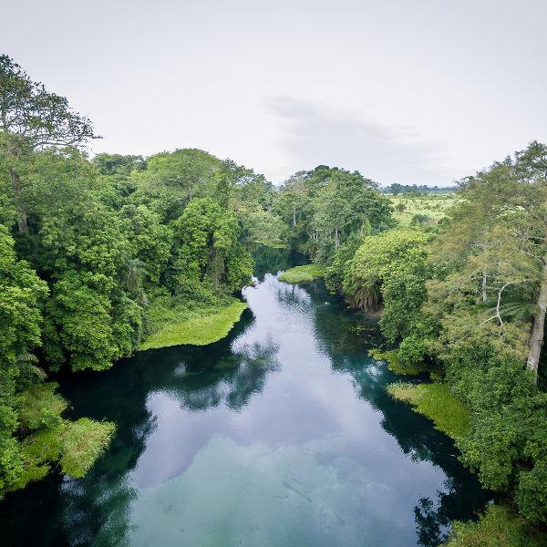 congo-river-nature