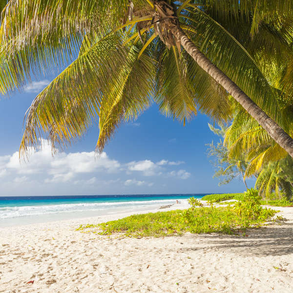 beaches-barbados-serene