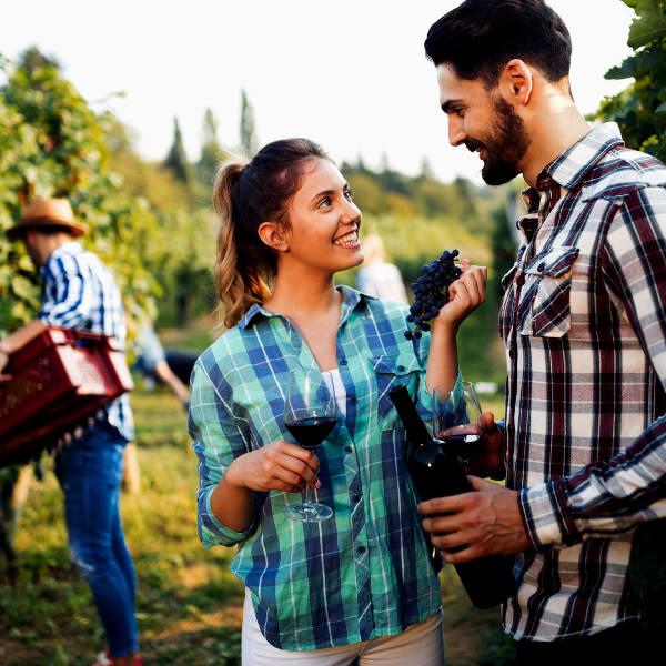 uruguay uruguayan wine
