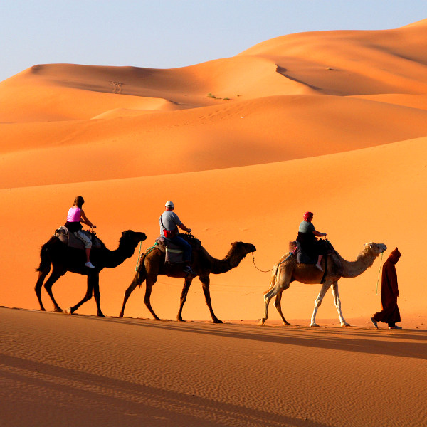 tunisia camel safaris