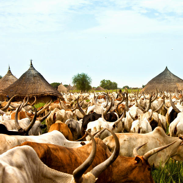 south sudan villages