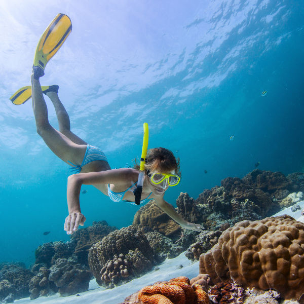 daydream-snorkelling