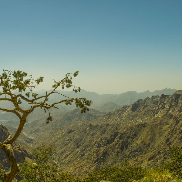 mountain desert taif