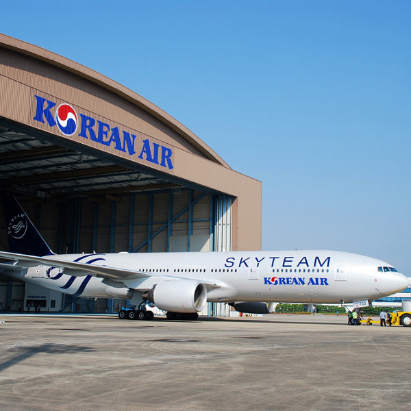 Korean air skyteam